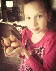 Jessica collected our very first eggs!